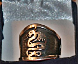 Jesses Ring from Kang Rhee close up